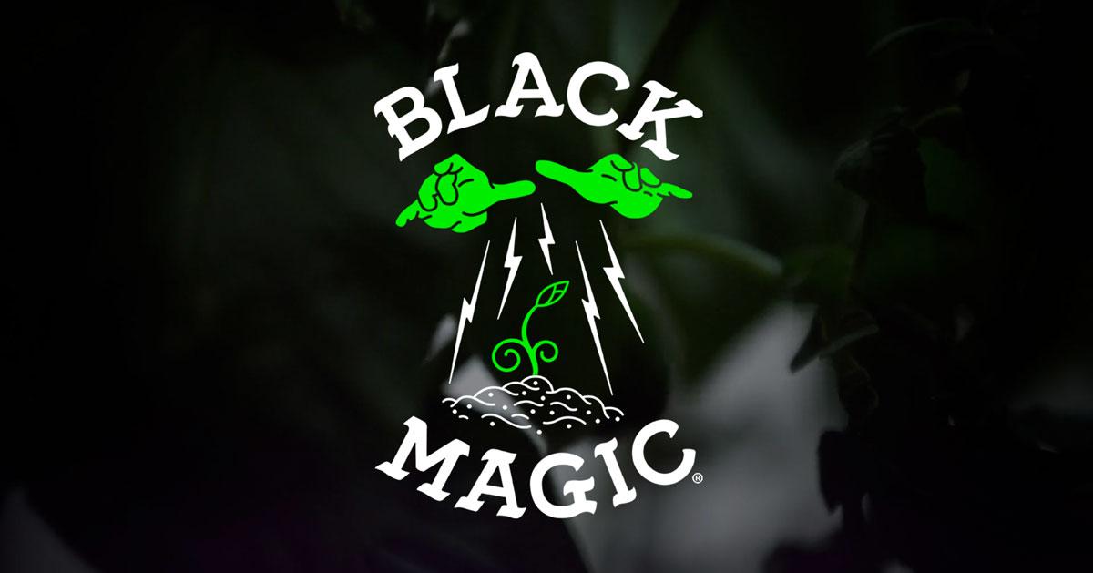 Black Magic Secrets – Welcome the Dark Side